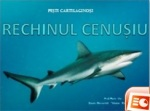 rechin cenusiu