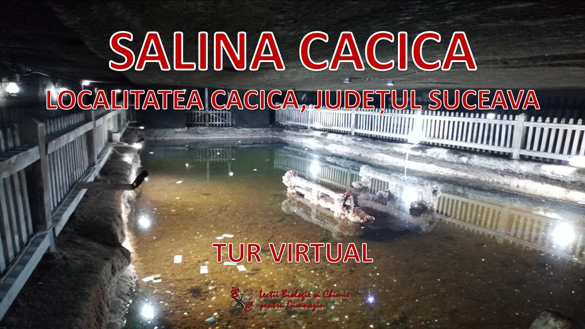 Salina Cacica